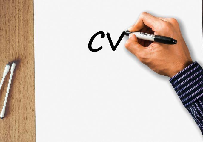 doświadczenie w CV